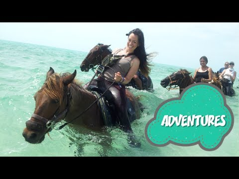 TRAVEL GUIDE: Swimming Horses