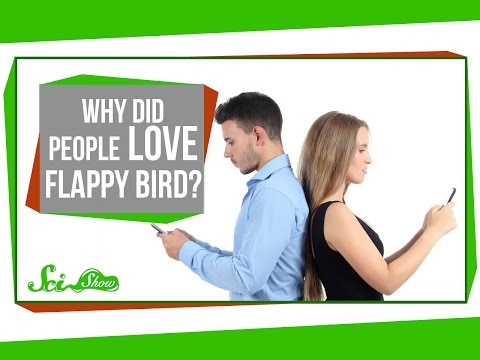Why Did People Love Flappy Bird?