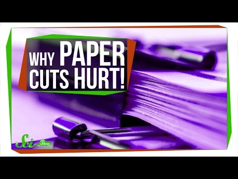 Why Are Paper Cuts So Painful?