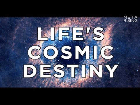 Life's Cosmic Destiny - Will life saturate the universe? | Waking Cosmos CLIP