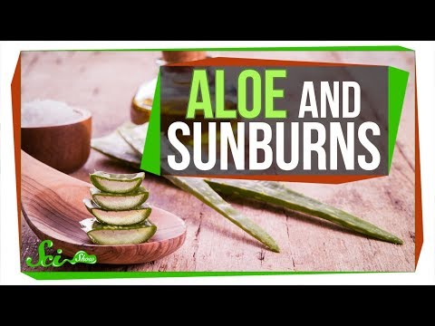 Does Aloe Really Treat a Sunburn?