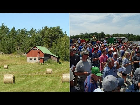 Young man attends auction to buy back family farm: Astonished when entire hall goes dead silent