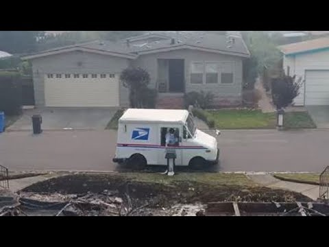 Man Follows Postman To Deserted Neighborhood And Is Shocked By What He Sees