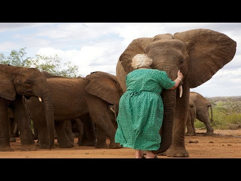 The Elephants Always Line Up To Hug This Woman. The Reason Why Left Me Speechless.