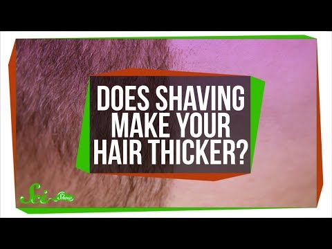 Does Shaving Make Your Hair Thicker?