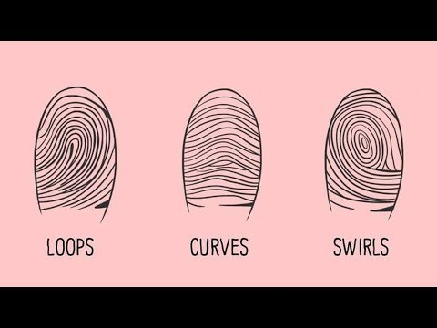What Fingerprints Say About Your Personality