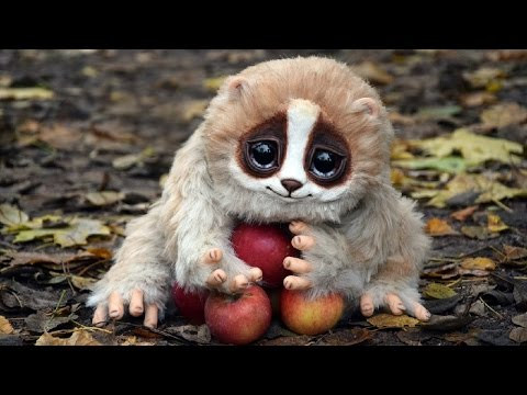 Cute Animals That Can Kill You