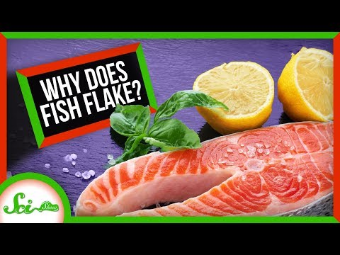 Why Does Fish Flake?