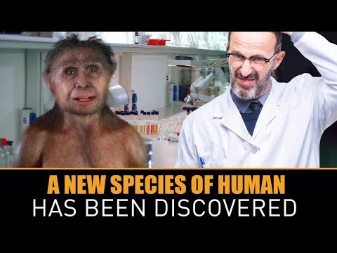 Scientists in the Philippines Have Discovered a New Species of Human
