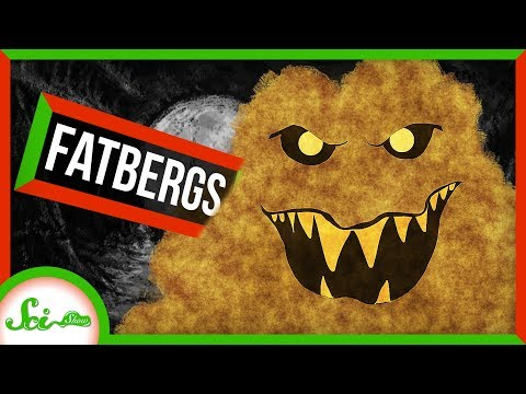 Why Our Sewers are Plagued by Fatbergs